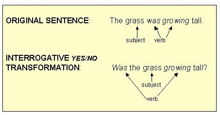 use grew in a sentence