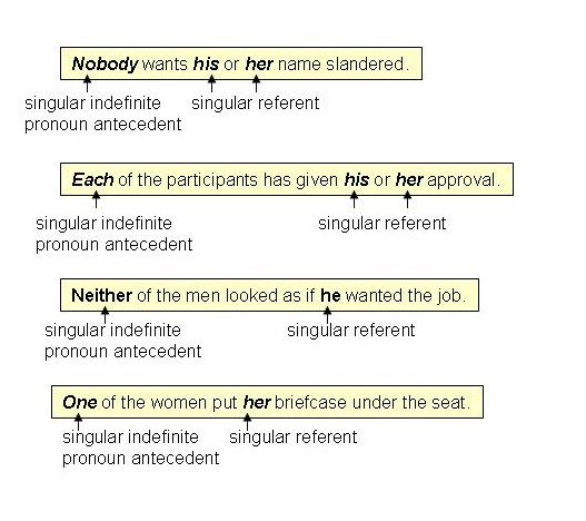 Pronoun Antecedent Agreements – Indefinite Pronoun Worksheet