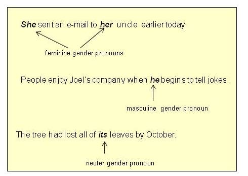 Help me write an essay using personal pronouns