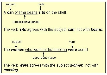 Worksheets Example Of Verbs In Sentence subject verb agreement